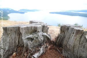 Galiano Island : The Heart of the Gulf Islands thumbnail