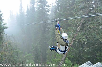 Zipline 穿越 Blackcomb Mt. thumbnail
